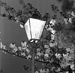 1000JG0016-01