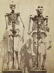 2006BC0576-01