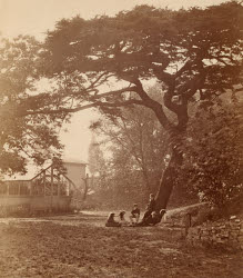 2009CE2350