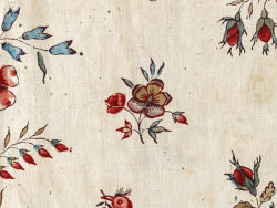 2009CT1134