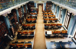 1000LM0817